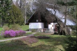 arboretum-4.jpg